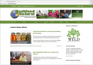 At Now Age New Media, we specialize in custom website design for wellness and green business
